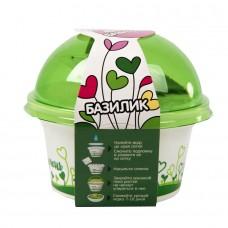 Набор для выращивания микрозелени.  БАЗИЛИК, зеленый, белый