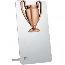 Награда Bowl Bronze